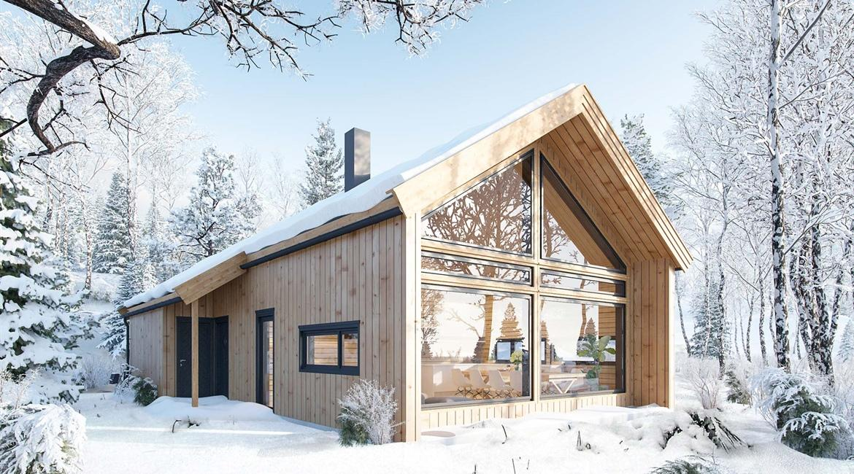 Зимний загородный дом